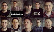 http://www.badshakyn.de/